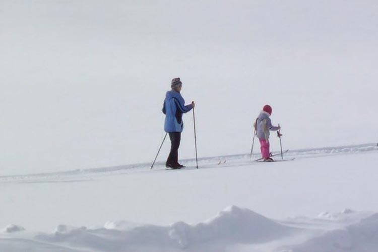 special request - mother and daughter cross country skiing